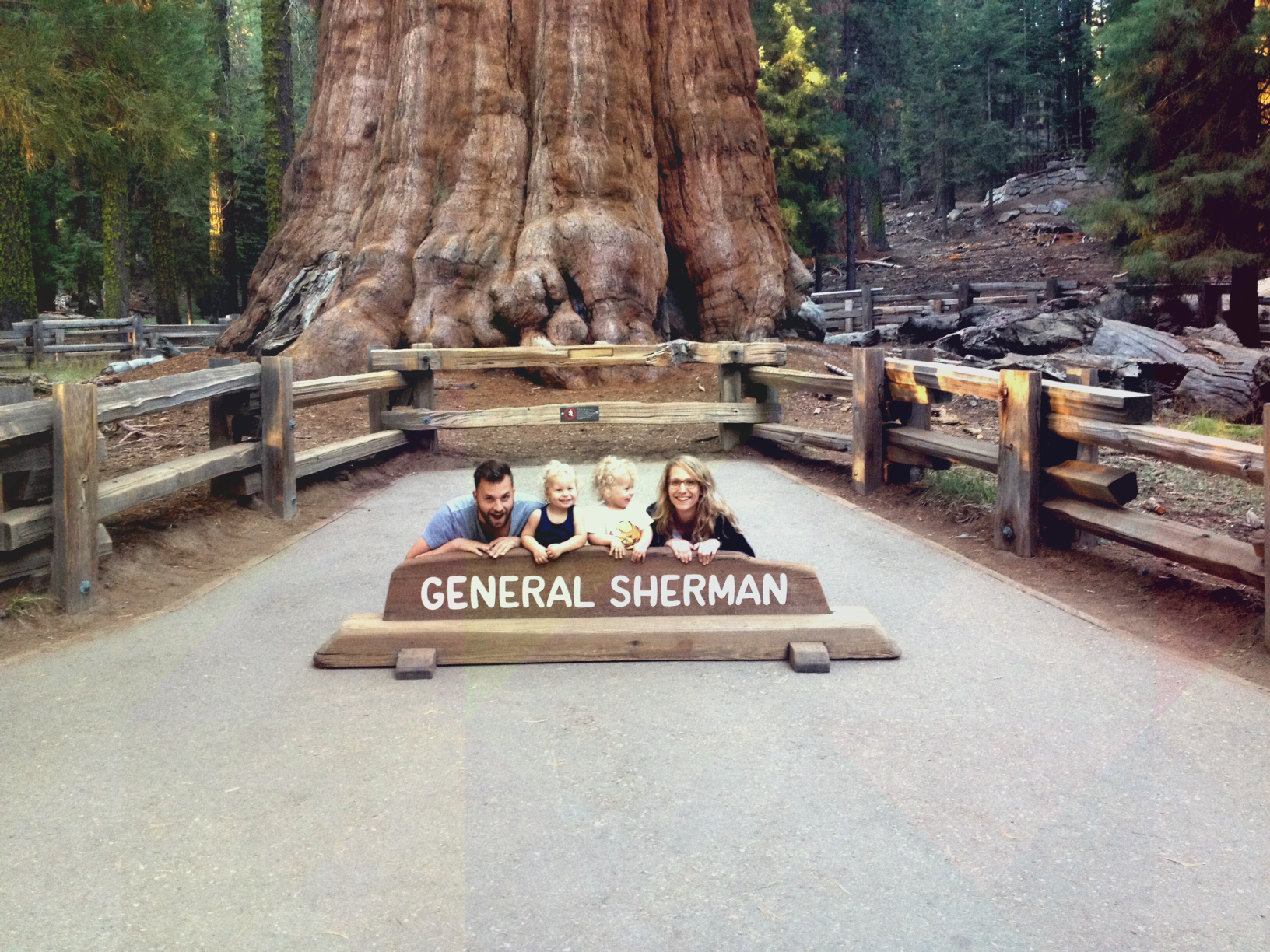 sequoias1