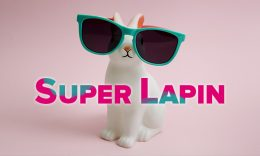 HB-article-lapin